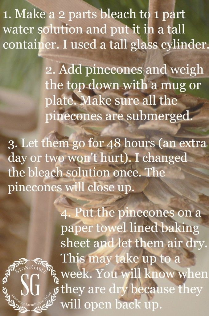 BLEACHED PINECONES-instructions-stonegableblog If you can't wait days for them to dry, let them dry for 24 hours then place in 250 degree oven until they open up (that's how you know they are dry)