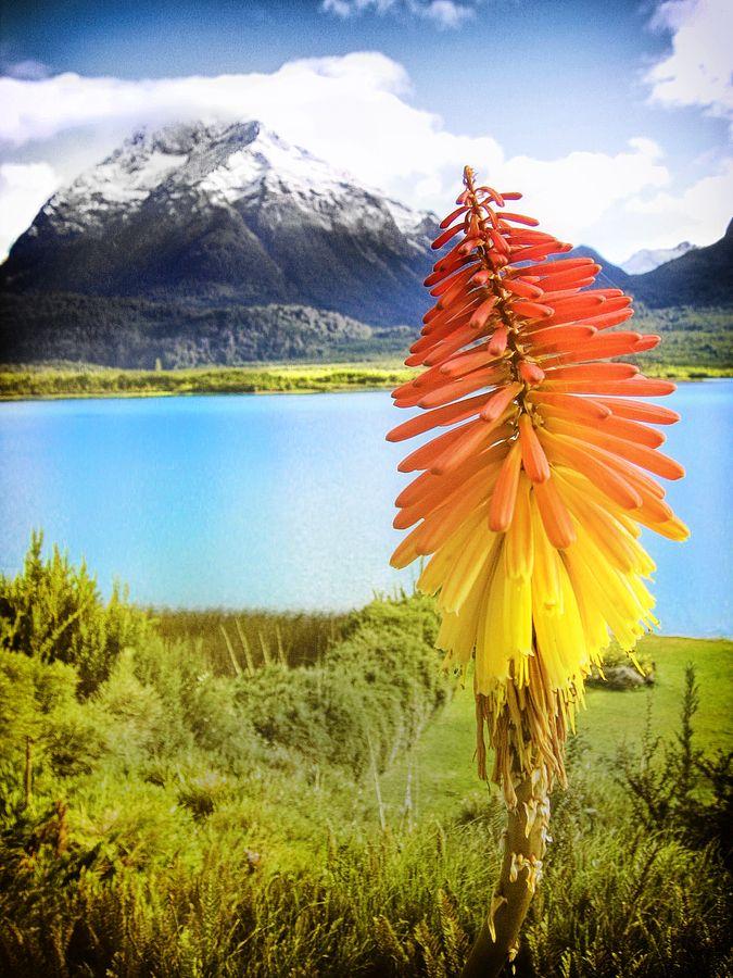 Overlooking Lake Mascardi, in Bariloche, Rio Negro Province, Argentina