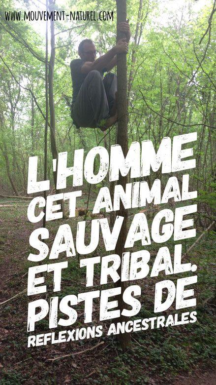 #sauvage #primal #mouvementnaturel #mmn #training #paleofitness #paleo #citation #citationdujour