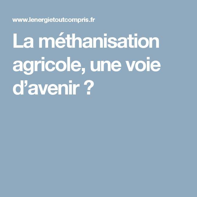 La méthanisation agricole, une voie d'avenir ?