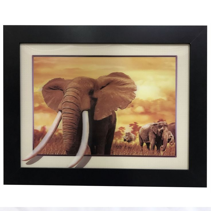 Creative Motion Industries 3 D Image with Frame with Elephants and Rhino Horizontal