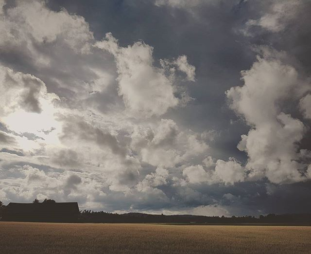 The weather over this field...awesom feeling 😍 #weather #awesome #field #clouds #sky #rain #eye_for_earth #eyecatching #sombrescapes #heart_imprint #earth #earth_shots #fotocatchers #views #from_your_perspective #naturalbeauty #nature_shooters #nature #na_natures_art #impressive #powerful #ig_namaste #ig_worldclub #igdaily #fiftyshadesofnature #inthemoment #mindfulness #power