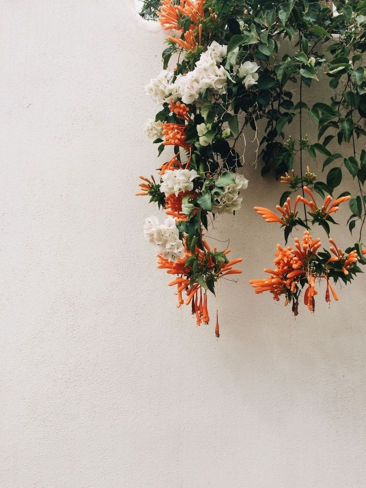 20+ Adorable Examples How To Arrange Hanging Flowers For Your Yard