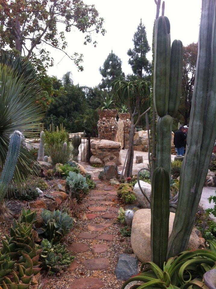 430 best images about Desert landscaping ideas on Pinterest