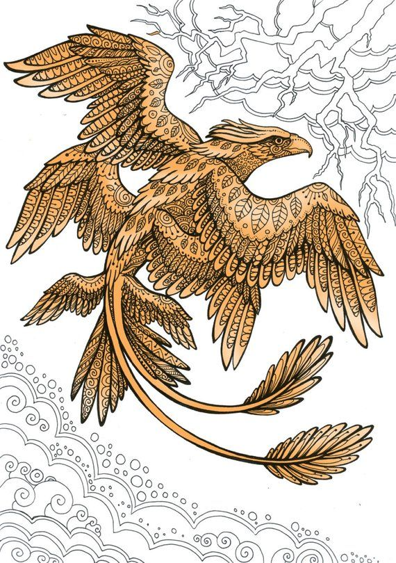 Frank The Thunderbird Fantastic Beasts Adult Coloring Page Doodle