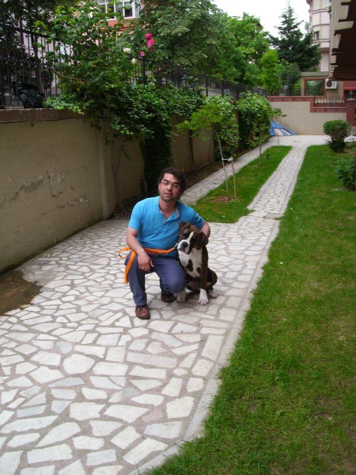 Yavru Köpeğiniz Eve Gelmeden Önceden Edinilecek Temel Malzemeler;   Pozitif Köpek Eğitmeni