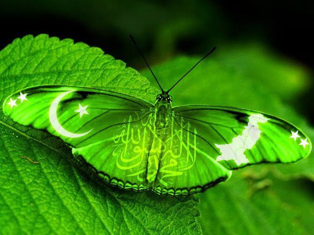 Dps For Facebook Happy independence day Pakistan 2019 #independencedayquotes poe…