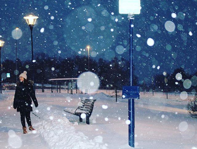 WEBSTA @ sofil88 - Troco o nosso frio por este 🔙🇳🇴......#throwbackthursday #throwback #norway #tromsø #snow #snoweverywhere #cold #canoneos100d #canoneos #photography #like4like #likeforlike #happy #happymoments #november #sweetnovember #night #allnightlong #blueandwhiteday #socold #noruega #tromso