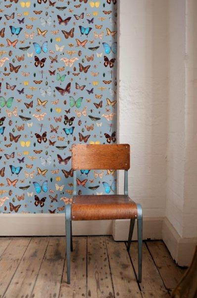Bugs and Butterflies   PaperRoom