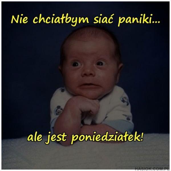 Nie chciałbym siać paniki - Hasiok.com.pl