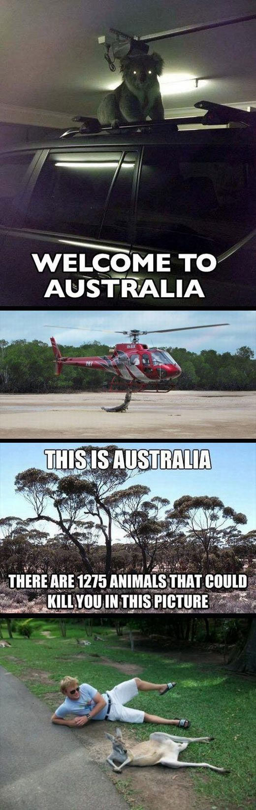 Things are a little different in Australia... - The Meta Picture - ✮ www.pinterest.com/WhoLoves/Australia ✮ #Australia
