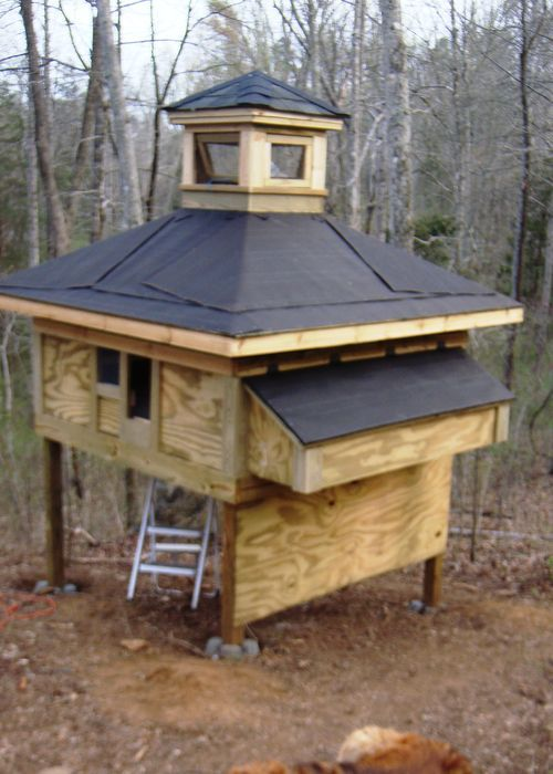 17 best images about chicken coops on pinterest ladder for Duck shelter designs