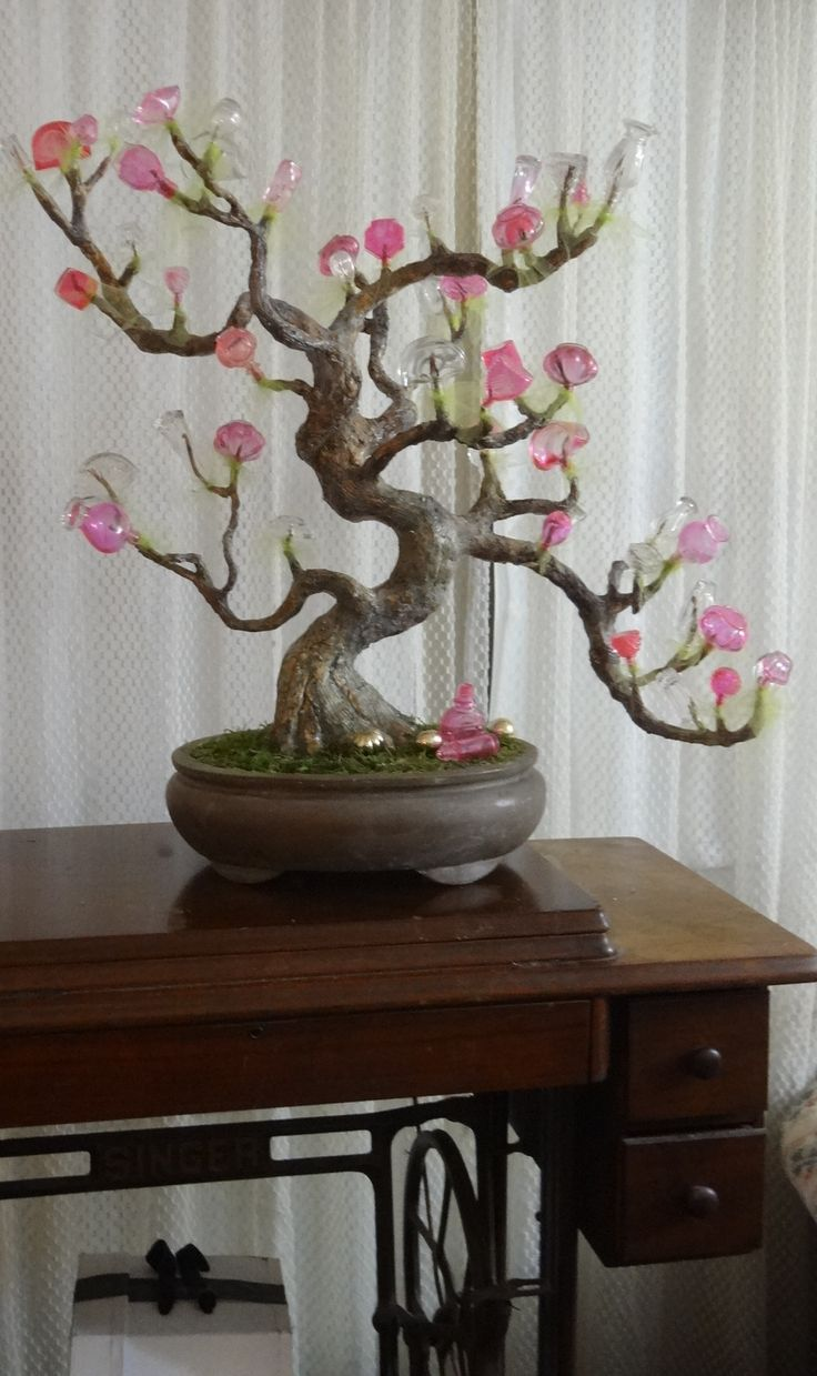 1000 Images About Bottle Bonsai Tree On Pinterest