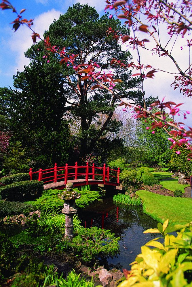 Visitors - Attractions - Europe's Finest Japanese Gardens - Irish National Stud