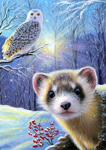ACEO original ferret owl sunlight winter snow wildlife landscape painting art | Art, Paintings | eBay!