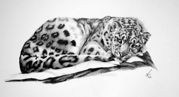 Snow Leopard-Resting von salt25.deviantart … auf @DeviantArt