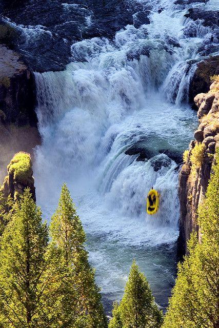 Facing the rapids - Rafting descent of Mesa Falls, Snake River, Idaho, USA