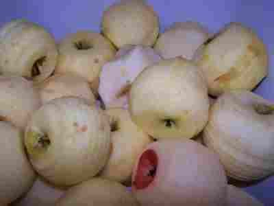 Applesauce Recipe: How to Make Homemade Applesauce With NO Special Equipment