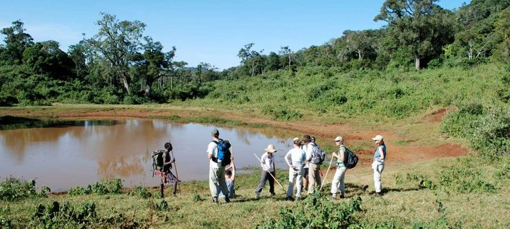 #KenyaSafariTours&Holidays are the best safari tour in Kenya come and enjoy with family. Check out more @ http://kenya-safaris.co/