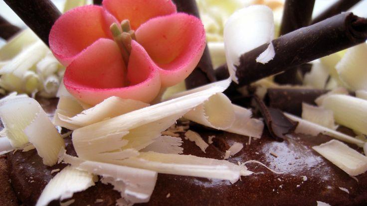 Hvordan bake kaker og lage dessert uten å bruke hvetemel? «Ukas ønskeoppskrift» er en samling glutenfrie kaker og desserter.