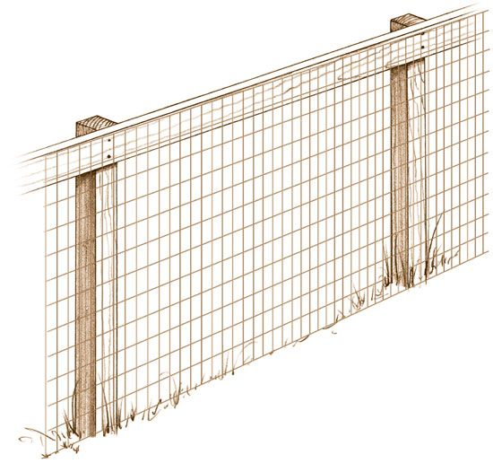Learn the installation basics for mesh fencing that will either keep your small animals in; or will keep them out of your growing garden.