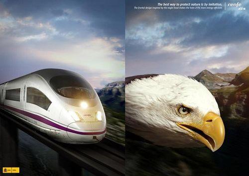 de comparar el tren ave de alta velocidad con el ave el pájaro