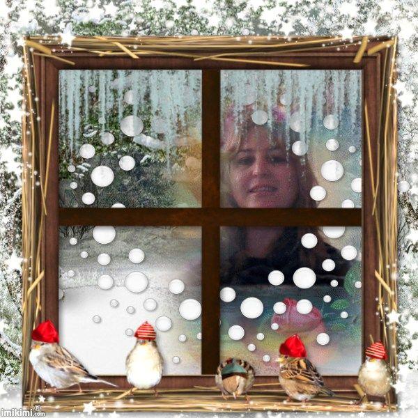 winter window-lissy005