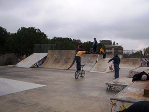 Diversió, velocitat i acrobàcies a l'Skatepark a Sabadell #sortirambnens