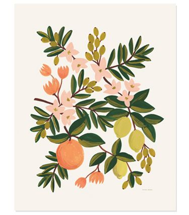 Citrus Floral Print | Rifle Paper Co.