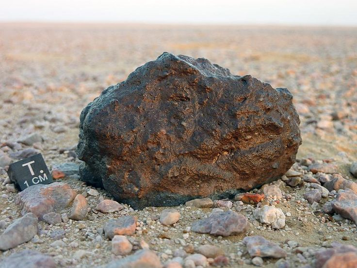 Lunar meteorite 292g - Dhofar 1766  In-situ