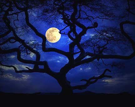 Night sky by carmela