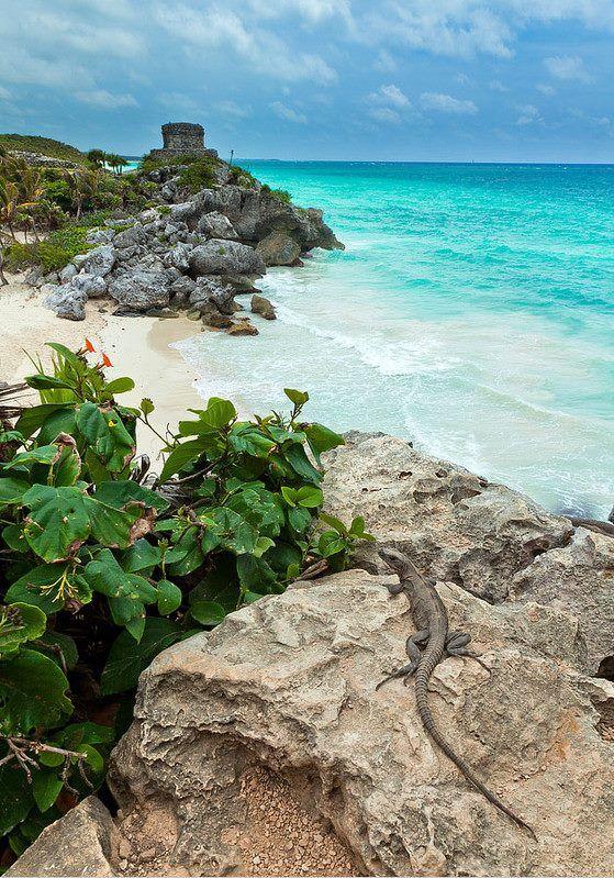 The beautiful Tulum Beach in Mexico.
