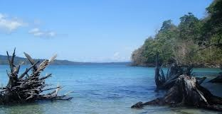 Andaman is a good place for honeymooner, located in India. We provide online bookings for Andaman tour packages, Andaman travel packages and tour packages for Andaman at very cheap rates.