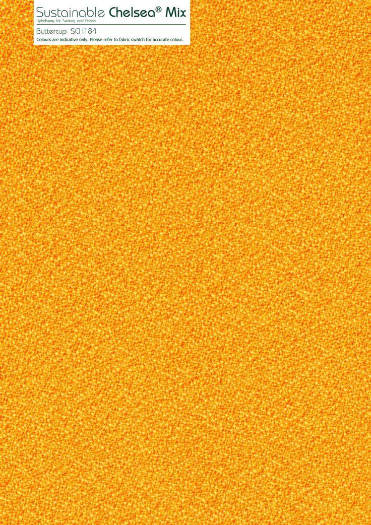 Buttercup SCH184