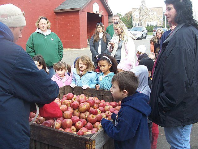 Kids learn how we pick apples off the trees, get a demo using our apple picking basket and then tour our packing house to see what happens after the apples are picked.