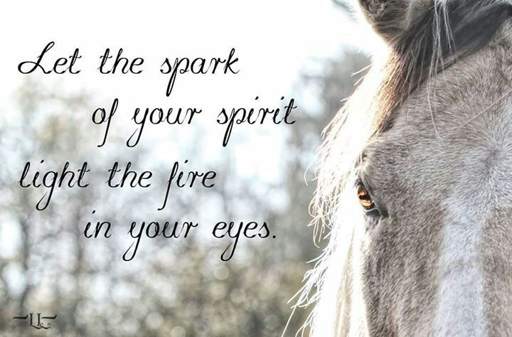 """""""Let the spark of your spirit light the fire in your eyes ..."""