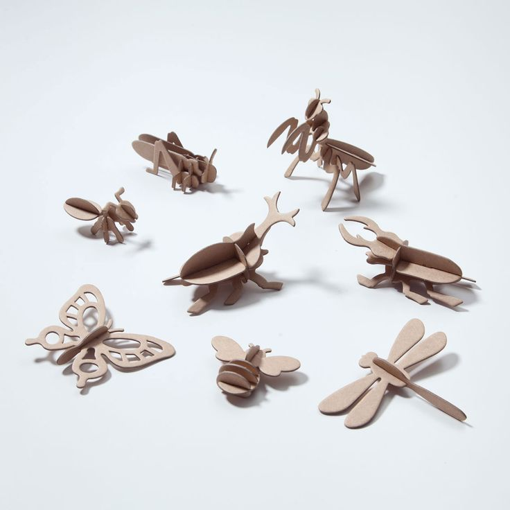 muji - insects