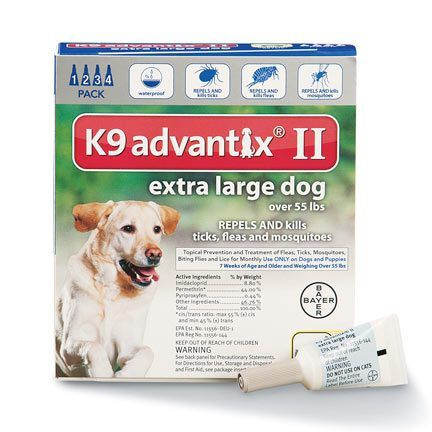 Best Flea And Tick Medicine For Dogs - http://pets-ok.com/best-flea-and-tick-medicine-for-dogs-dogs-920.html