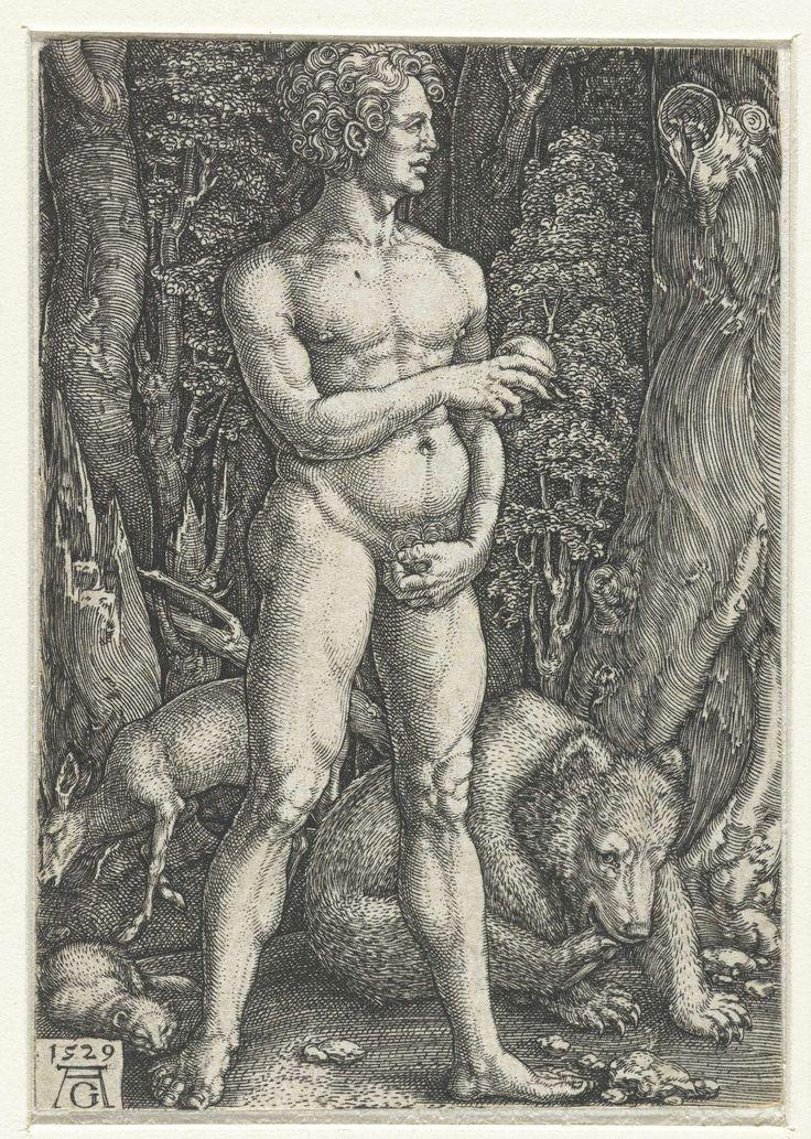 Heinrich Aldegrever   Adam, Heinrich Aldegrever, 1529   Adam in het paradijs, de verboden vrucht in zijn rechterhand. Achter hem een beer, een fret en een hert. Vormt samen met een prent met Eva een voorstelling van de zondeval.