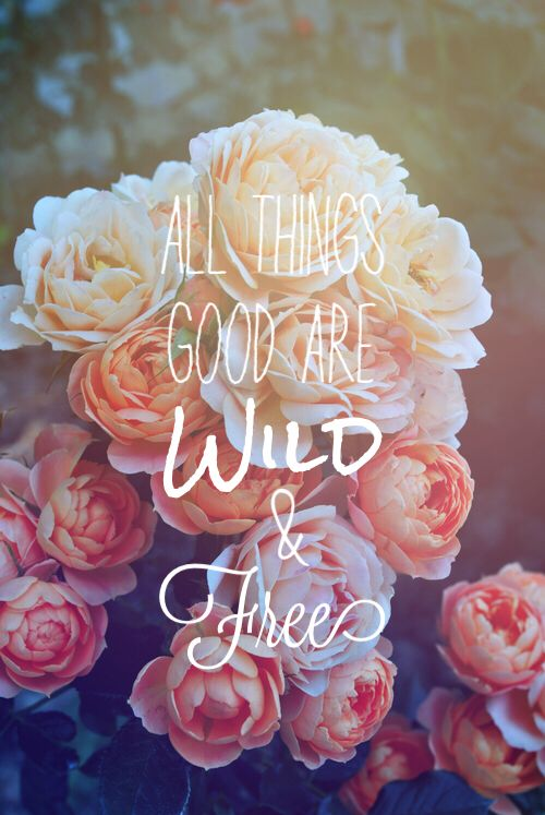 All things good are wild and free