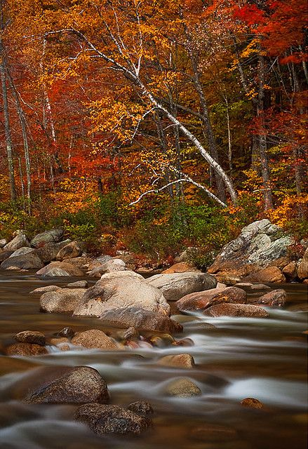 Swift River, Kancamagus Highway, White Mountains, New Hampshire; photo by .Bryan Swan