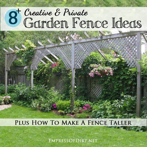 622 best images about fencing ideas we love on pinterest for Short fence ideas