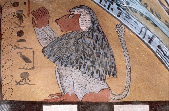 Una scena curiosa, quella raffigurata sulla tomba della sacerdotessa Hetpet: scimmie che ballano di fronte ad un'orchestra