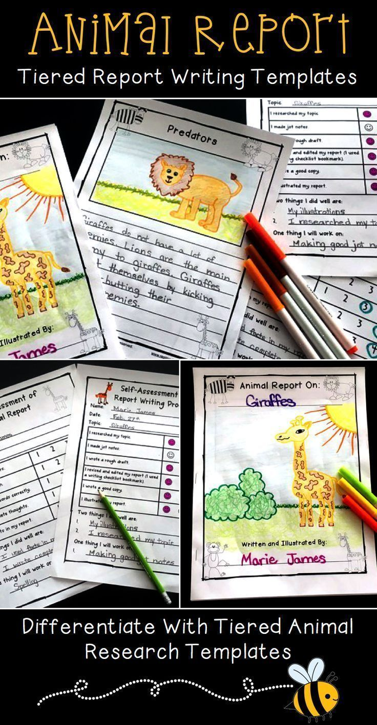 Tierforschungsprojekt – Animal Report Writing Templates   – zoo project learning – #animal #Learning…