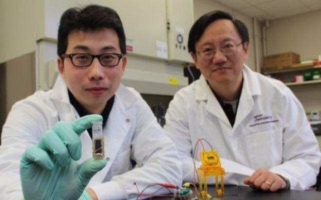Al MIT inventano una batteria che va a zucchero Mi piace l'andamento che sta prendendo la ricerca sulle batterie per i device mobili e per la componentistica tecnologica in generale: si propende per l'uso di materiali naturali, reperibili in natur #mit #tecnologia