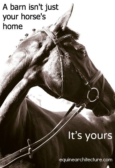 A barn isn't just your horse's home, it's yours.