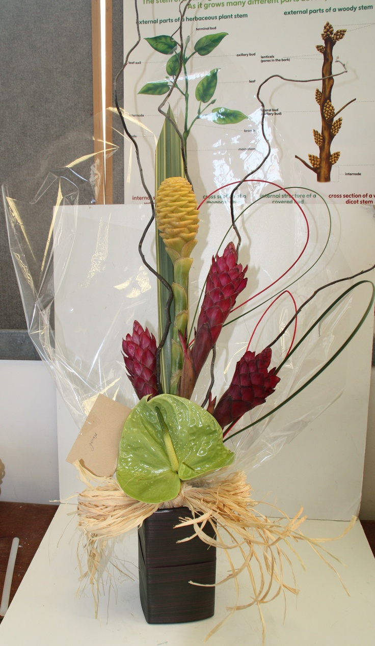 Form linear in vase - ginger lilies and anthurium