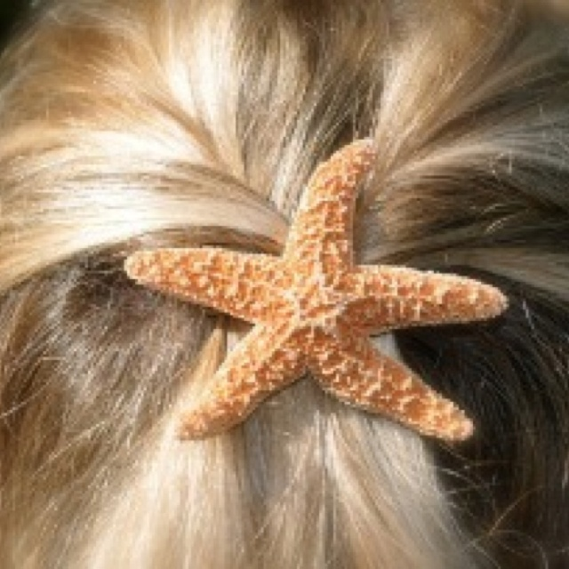 1000 images about seashells in hair on pinterest for Seashells for hair