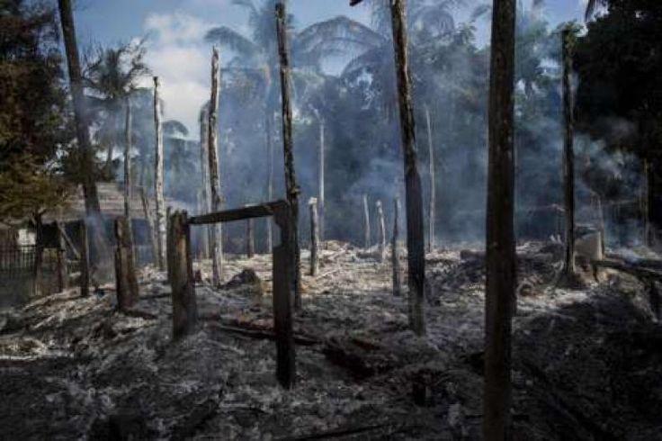Innalillahi Tentara Myanmar Tembaki Desa Muslim Rohingya di Rakhine 25 Tewas  RUmah-rumah yang terbakar hangus saat media mengunjungi kawasan Rakhine bulan lalu -gambar diambil 14 Oktober.  KONFRONTASI - Pemerintah Myanmar mengakui menewaskan 25 orang dan memberondong desa-desa kaum Muslim Rohingya dari helikopter tempur. Tentara Myanmar atau Burma mengaku mereka menembak mati setidaknya 25 orang di desa-desa Muslim Rohingya di kawasan Rakhine yang bergolak hari Minggu (13/11). Disebutkan…
