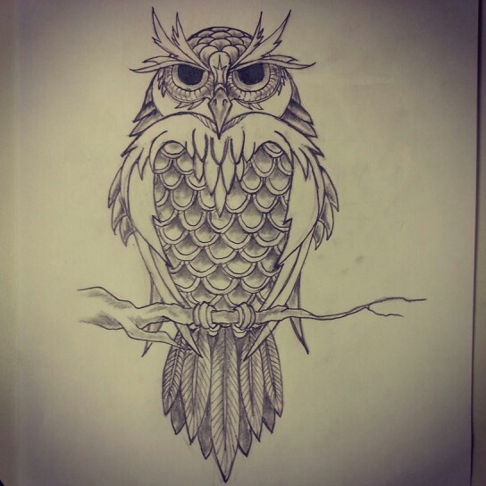 Owl Tattoo Sketches Pinterest • The worl...